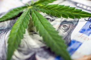 cannamoney 300x200 - Financing Options for Starting a Weed Business